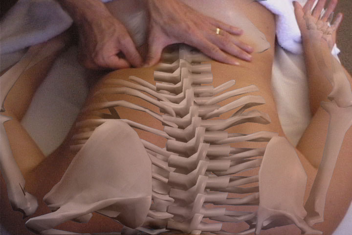 Sport Massage & Neuromuscular Therapy